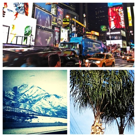 Left to Right: Bright lights in Times Square. Mountains c/o Salt Lake. The palms out West.